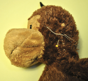 Toy monkey in the process of being stitched up.