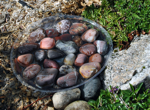 A shallow bowl filled with rocks makes a bee bath.