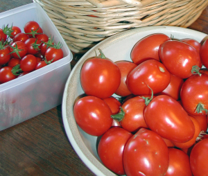 bowls of cherry and plum tomatoes