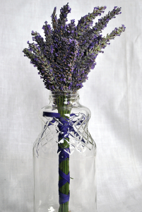 Lavender in jar-vase
